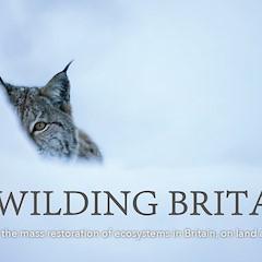 Rewilding Britain Brochure